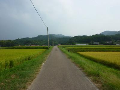 戸田柿本神社へ向かう道