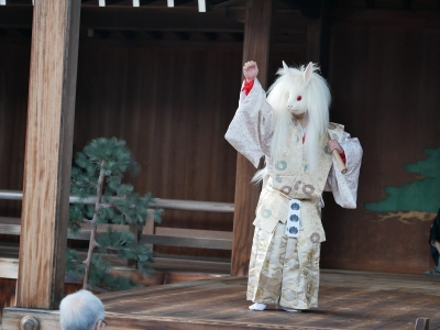 梅鉢会・因幡白兎・復活した白兎