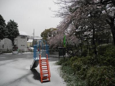 20200329横浜市都筑区荏田東の松葉公園